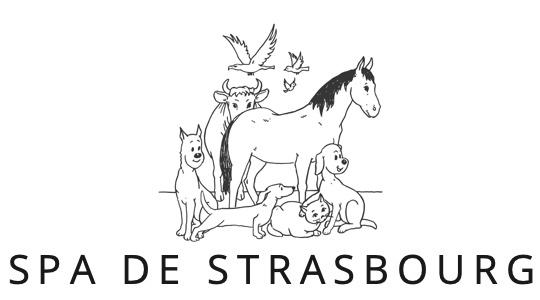Spa De Strasbourg Adopter Un Chien